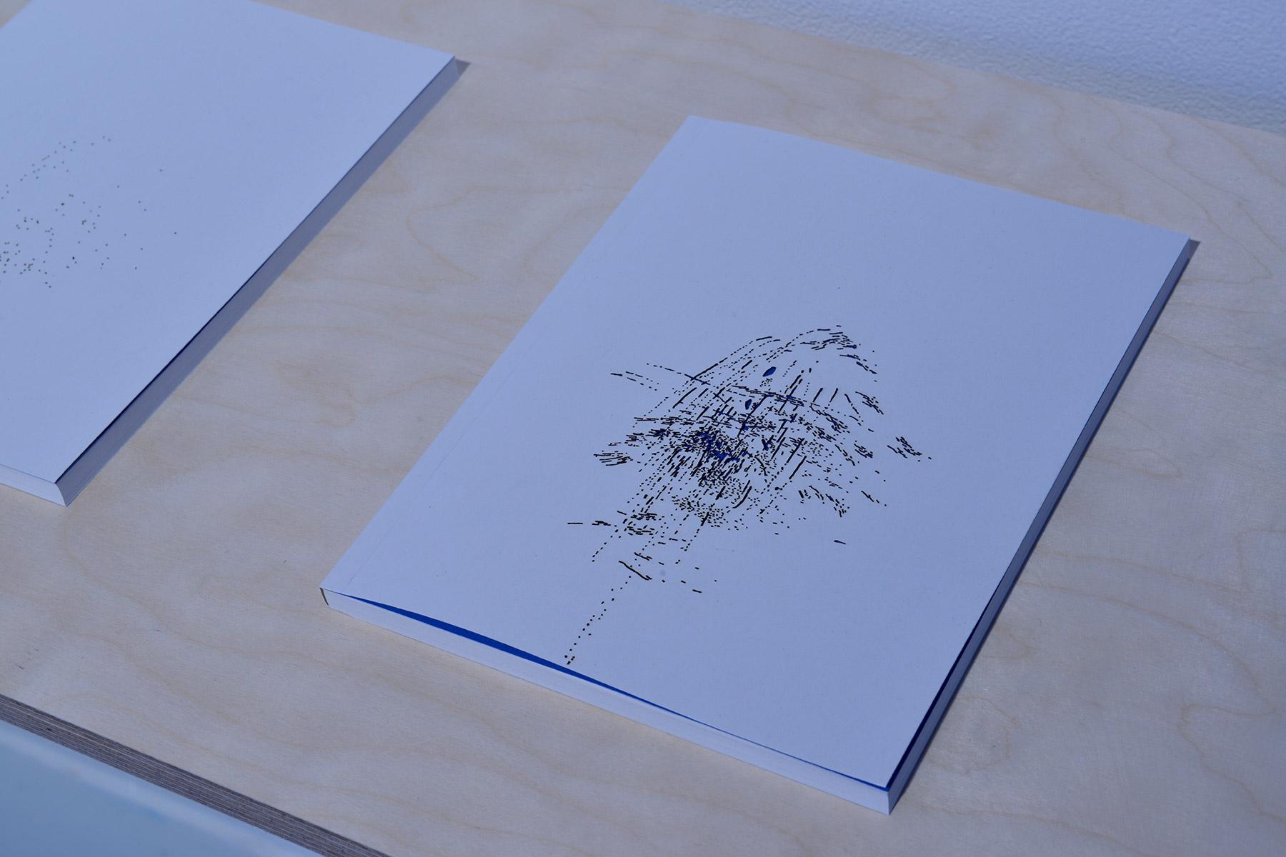 Fontaine bleue, livre